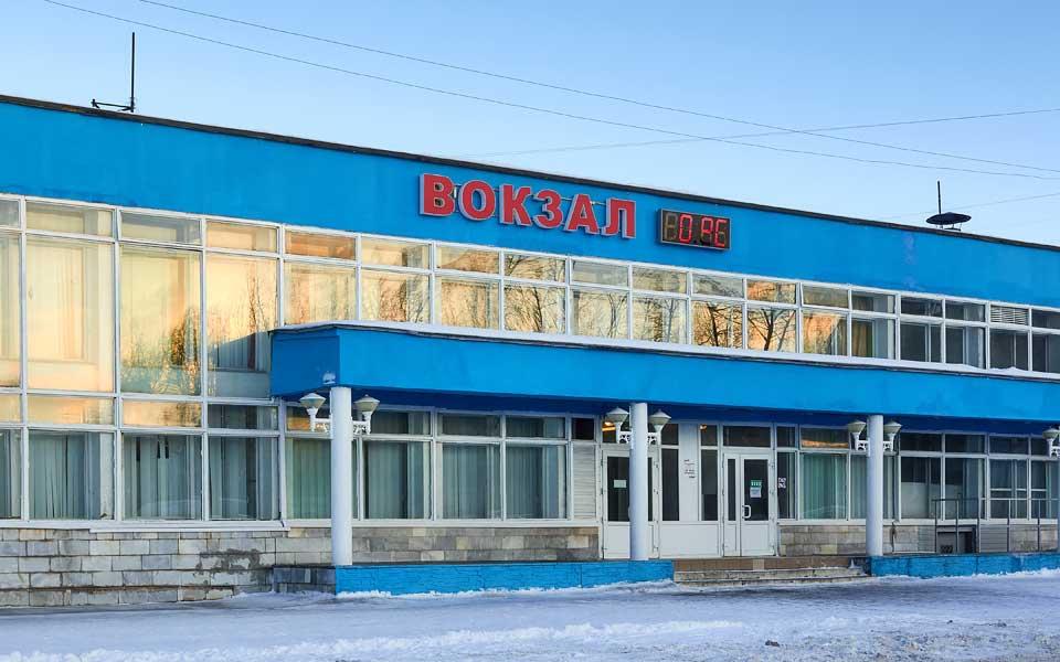 Стрижка собак вокзале Северодвинска